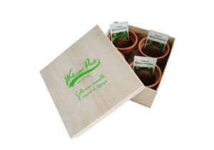 welcome pack végétale avec boite cadeau en bois